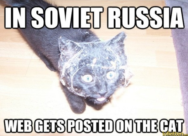 IN SOVIET RUSSIA WEB GETS POSTED ON THE CAT