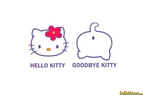HELLO KITTY - GOODBYE KITTY