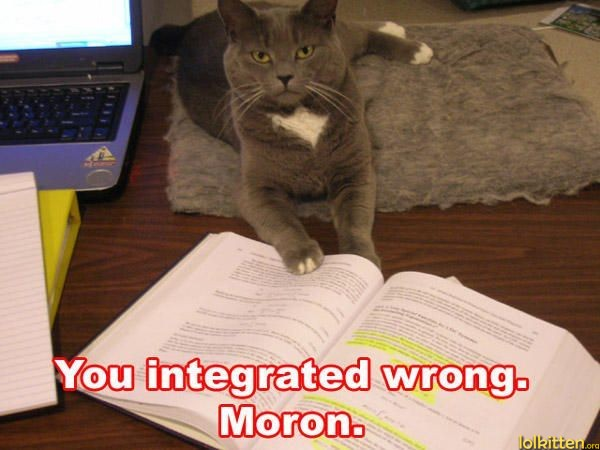 lolcats you integrated wrong