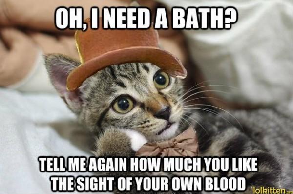funny-cat-lolcat-needs-a-bath-600x397.jp