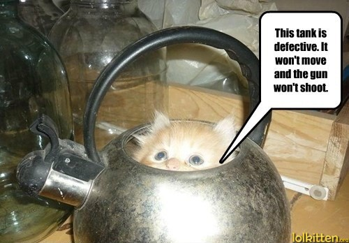 funny-cat-pictures-lolcats-return-it.jpg