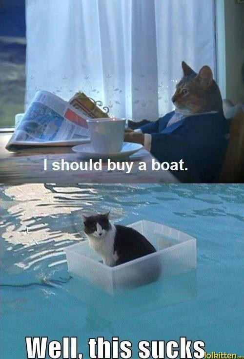 I should buy a boat. Well, this sucks