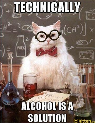funny-cat-lolcat-alcohol-is-solution.jpg