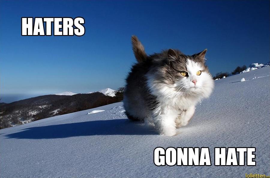 funny-cat-lolcat-freerider-cat.jpg