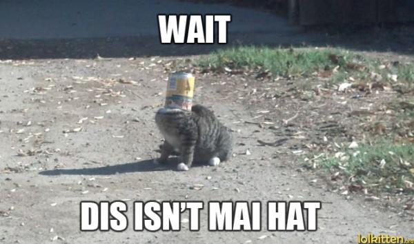 WAIT - DIS ISN'T MAI HAT