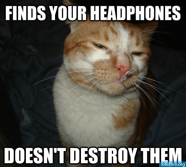 FINDS YOUR HEADPHONES - DOESN'T DESTROY THEM