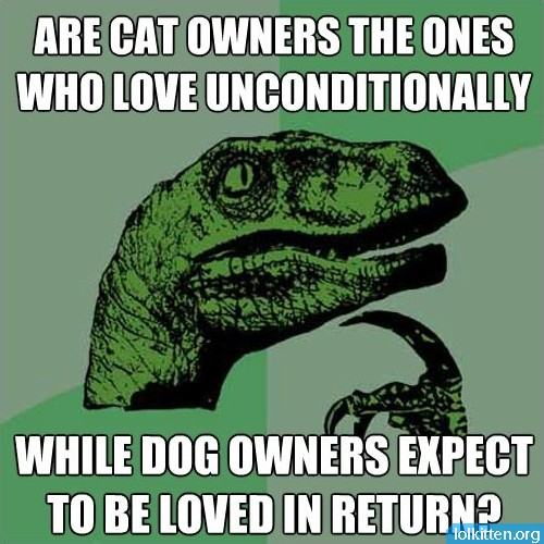 ARE CAT OWNERS THE ONES WHO LOVE UNCONDITIONALLY WHILE DOG OWNERS EXPECT TO BE LOVED IN RETURN?