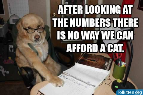 AFTER LOOKING AT THE NUMBERS THERE IS NO WAY WE CAN AFFORD A CAT.