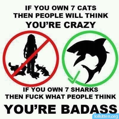 IF YOU OWN 7 CATS THEN PEOPLE WILL THINK YOU'RE CRAZY - IF YOU OWN 7 SHARKS THEN FUCK WHAT PEOPLE THINK - YOU'RE BADASS