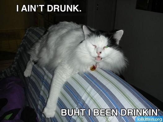 I AIN'T DRUNK. BUHT I BEEN DRINKIN'