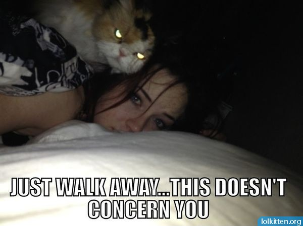 JUST WALK AWAY... THIS DOESN'T CONCERN YOU