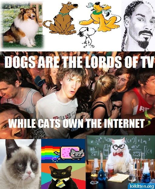 DOGS ARE THE LORDS OF TV WHILE CATS OWN THE INTERNET