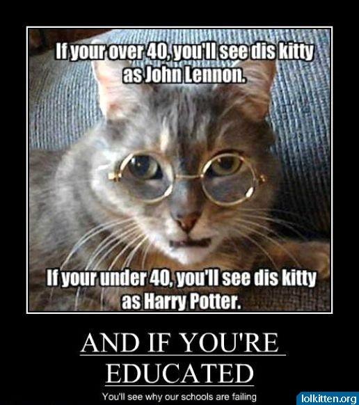 educated cat - photo #23