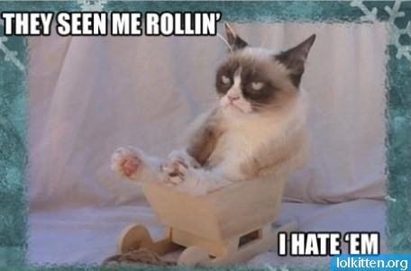 THEY SEE ME ROLLIN' - I HATE 'EM