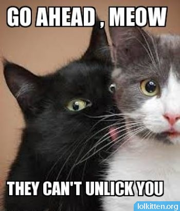 GO AHEAD, MEOW -  THEY CAN'T UNLICK YOU
