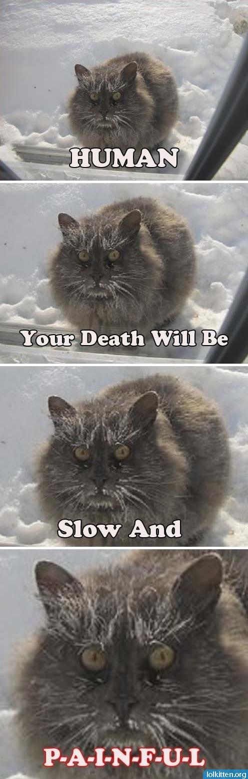 HUMAN Your Death Will Be Slow And P-A-I-N-F-U-L