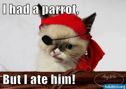 I had a parrot. But I ate him!