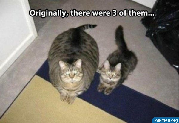 Originally, there were three of them...