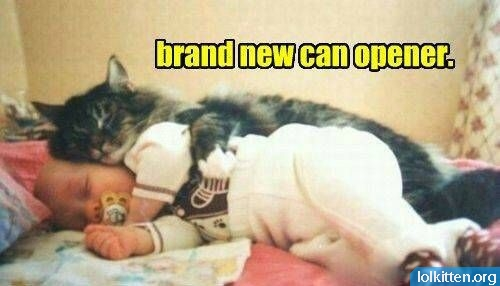 brand new can opener