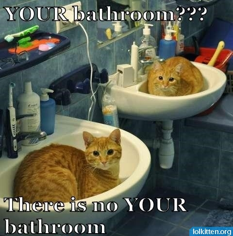 YOUR bathroom??? There is no YOUR bathroom