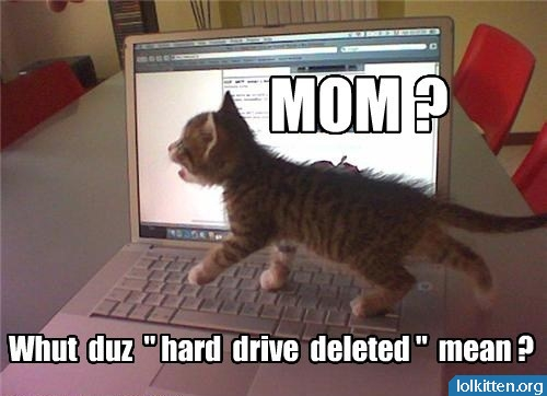 "MOM? What duz ""hard drive deleted"" mean?"